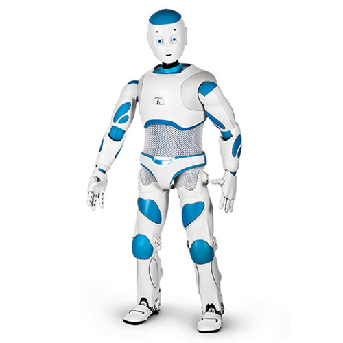 how to build a humanoid robot