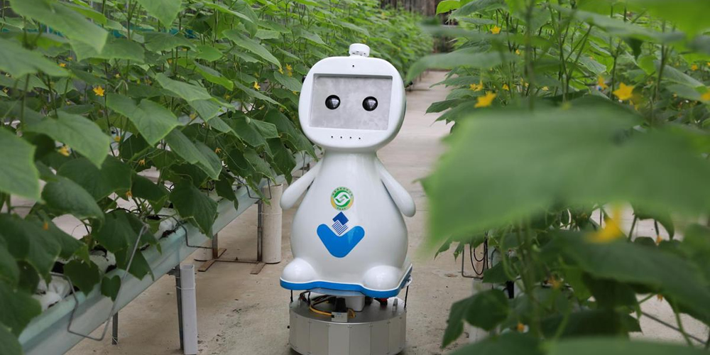 Farming robot makes its debut in chinaFarming-robot-makes-its-debut-in-china.jpg